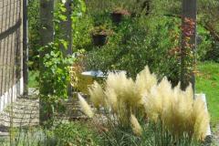 Pergola-naturstein-hell-pflanzen